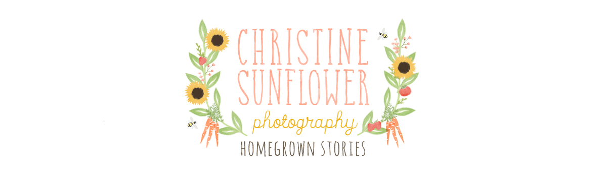 Christine Sunflower Photography logo